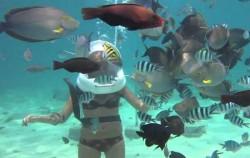 Deep Ocean Walker,Benoa Marine Sport,Deep Ocean Walker
