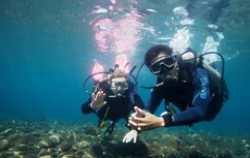 Scuba Diving,Lembongan Transfer,Hai Tide Huts Overnight Package