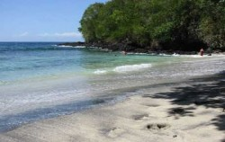 Bali Diving Activities, Padangbai Diving Sites