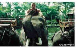 Elephant Safari Park,Bali Elephant Riding,Bali Adventure Elephant Riding