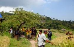 sambangan trekking ,Bali Trekking,Secret of Sambangan Trekking by Alam Adventure