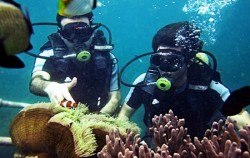 Fun Dive,Bali Diving,Diving Activities by BMR
