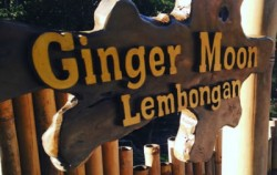 Ginger Moon Restaurant image, Lembongan One Night Package, Lembongan Package