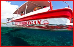 Glass Bottom,Lembongan Package,One Day Package by Rocky Fast Cruise