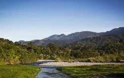 Bukit Lawang Orangutan Tour 2 Days 1 Night, Sumatra Adventure, Leuser National Park