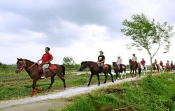 Ride through rice fields,Bali Horse Riding,Bali Horse Riding