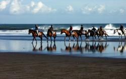 Beach Horse Riding image, Bali Horse Riding, Bali Horse Riding
