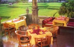 Indian Delites in Ubud image, Bali Indian Food, Bali restaurants