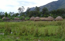 Jiwika Village,Papua Adventure,Jayapura-Wamena-Kurima Tour 6 Days and 5 Nights