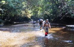 Jungle Trekking image, Borneo Overland Trip I 8 Days 7 Nights, Borneo Island Tour