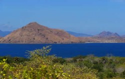 Komodo Island,Komodo Adventure,Komodo Tour Package 6D5N