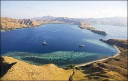 Komodo Island image, One Day Trip to Komodo Island, Komodo Adventure