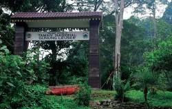 Leuser National Park,Sumatra Adventure,Leuser National Park Trekking 5 Days 4 Nights