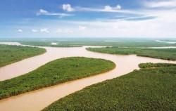 Mahakam River,Borneo Island Tour,Mahakam and Orangutan Tour 4 Days