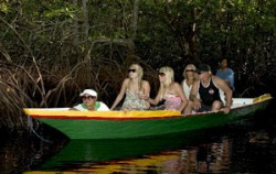 Mangrove Lembongan,Lembongan Package,One Day Package by Scoot Fast Cruise
