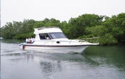 Mangrove Tour image, Mangrove Jungle Tour, Benoa Marine Sport