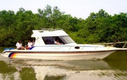 Mangrove Jungle Tour image, Mangrove Jungle Tour, Benoa Marine Sport