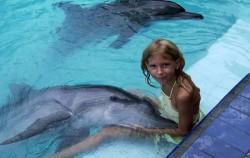 Melka Dolphin,Bali Dolphins Tour,Dolphins Interactive at Melka Hotel Lovina
