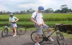 Bali Breeze Cycling Tour, Bali Cycling, Rice Field View