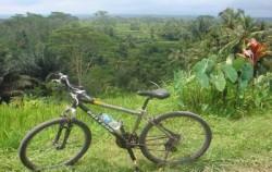 Bali Breeze Cycling Tour, Nature Fun Bike