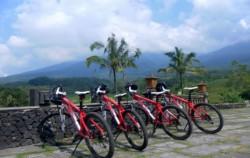 Nature View,Bali Cycling,Cycling Tour by BiO