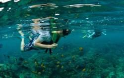 Nusa Penida Snorkeling Package, Nusa Penida Packages, Nusa Penida Snorkeling