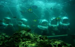 Diving View,Benoa Marine Sport,Bali Ocean Walker