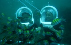 Diving View image, Bali Ocean Walker, Benoa Marine Sport