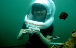 Under water,Benoa Marine Sport,Bali Ocean Walker