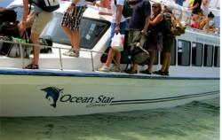 Passenger in Ocean Star Expres,Lembongan Transfer,Ocean Star Express