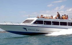 Ocean Star Express,Gili Islands Transfer,Ocean Star Express
