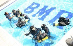 Padi Dive,Bali Diving,Diving Activities by BMR