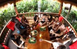Gazebos image, Waterbom Park Bali, Waterbom Park