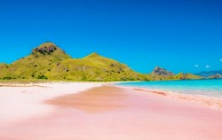 Pink Beach image, Komodo - Gili Laba Tour 4 Days 3 Nights, Komodo Adventure