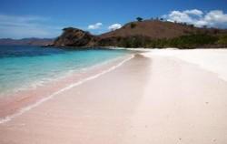 Komodo Island Adventure 5 days 4 Nights, Pink Beach