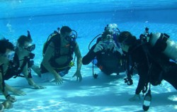 Bali Diving By Ena, Bali Diving, Pool Course