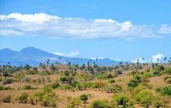 Rinca Island,Komodo Adventure,Wae Rebo and Komodo Tours 5 Days 4 Nights