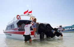 Rocky Fast Boat image, Rocky Fast Cruise, Lembongan Transfer