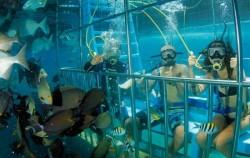 Semi Dive,Lembongan Package,Bali Underwater Scooter