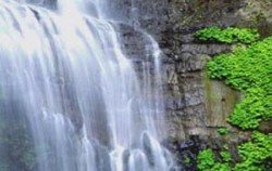 Waterfall View,Bali Sightseeing,Singaraja Gitgit Waterfall Tour
