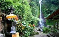 Gitgit Waterfall View,Bali Sightseeing,Singaraja Gitgit Waterfall Tour