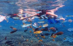 Snorkeling Lembongan,Lembongan Package,One Day Package by Glory Express