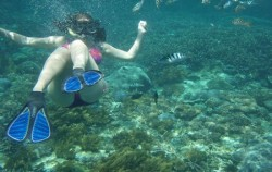 Lembongan Full Day Package by DCamel Fast Ferry, Lembongan Package, Snorkeling Lembongan