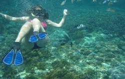 Lembongan  Package by DCamel Fast Boat, Lembongan Package, Snorkeling Lembongan