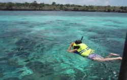 Snorkeling at Tanjung Bira Bea image, SOUTH SULAWESI 8D7N TOUR, Toraja Adventure