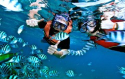 Snorkelling Serangan,Serangan Watersports,Marine Activities in Serangan