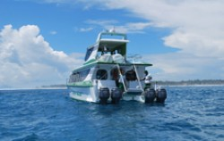 Scoot Fast Boat,Gili Islands Transfer,Scoot Fast Cruise