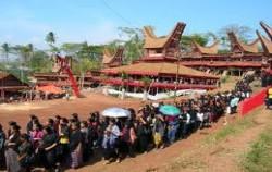 Tana Toraja Tour image, TORAJA CULTURE AND NATURE TOUR  3 Days / 2 Nights, Toraja Adventure