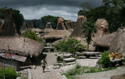 Sumba Exotic Tour 7D 6N, Tarung Village