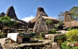 Tarung Village,Sumba Adventure,Sumba  Weaving  Tours 3N 4D